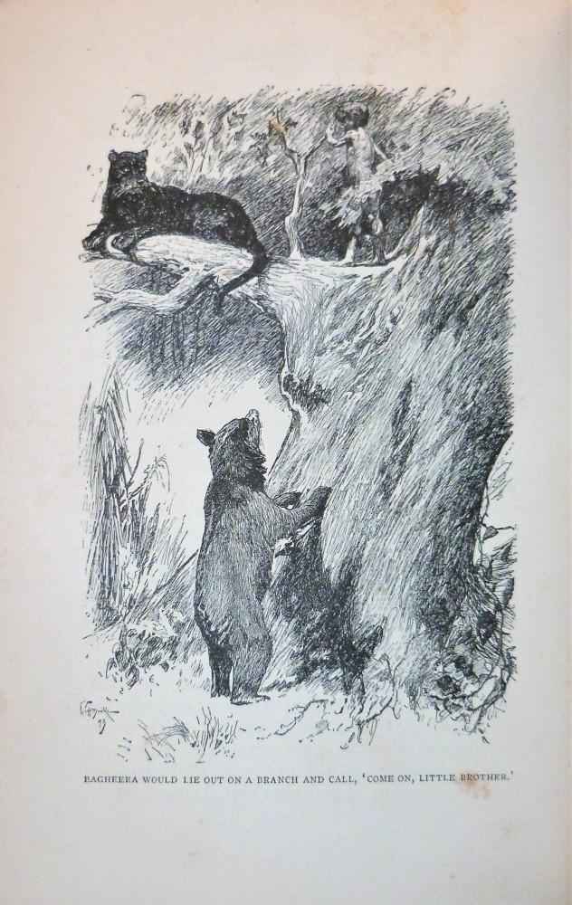 Rudyard Kipling, Joseph. The Jungle Book by Rudyard Kipling with illustrations J. L. Kipling, W. H. Drake, and P. Frenzeny. Londra, Macmillan and Co., 1894.
